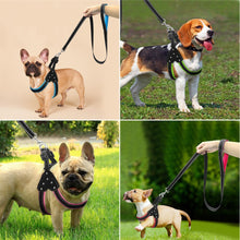 Load image into Gallery viewer, Reflective Padded Nylon Dog Harness & Leash Set - Dog Nation