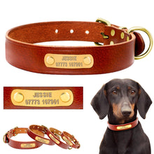 Load image into Gallery viewer, Dog Collar Genuine Leather Free Engraving - Dog Nation