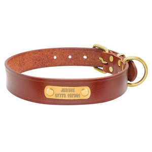 Dog Collar Genuine Leather Free Engraving - Dog Nation
