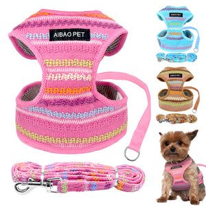 Small Dog Harness & Leash Set