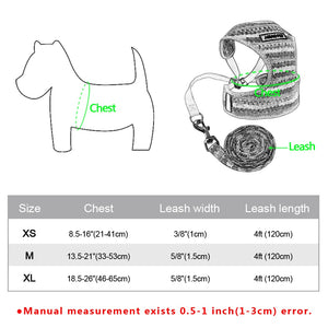 Small Dog Harness & Leash Set - Dog Nation