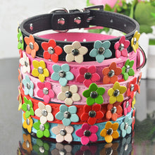 Load image into Gallery viewer, Colourful Flower Dog Collar