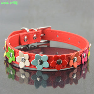 Colourful Flower Dog Collar