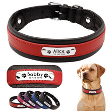 Load image into Gallery viewer, Genuine Leather Personalised Dog Collar - Dog Nation