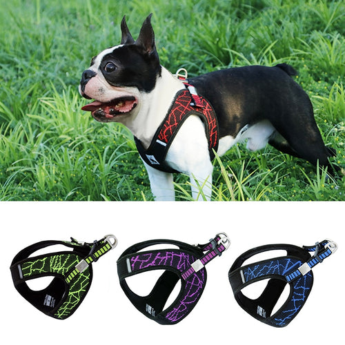 Durable Reflective Harness - Dog Nation