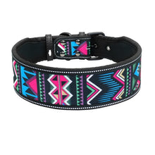 Load image into Gallery viewer, Astro Beautiful Designer Wide Nylon Dog Collars - Dog Nation