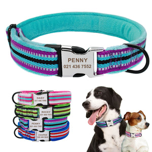 Soft Padded Nylon Dog Collar Coleira Perro - Dog Nation