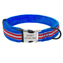 Load image into Gallery viewer, Soft Padded Nylon Dog Collar Coleira Perro - Dog Nation