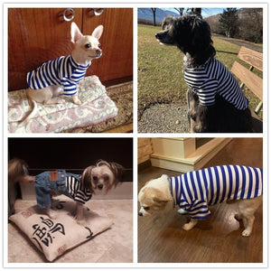 New Collection Navy Dog Outfit Cotton