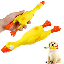Load image into Gallery viewer, Screaming Chicken Dog Toy - Dog Nation