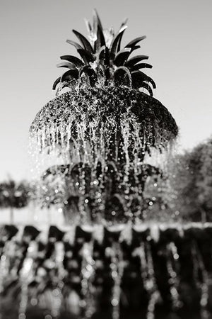 Pineapple Fountain #2 - Fine Art Photograph