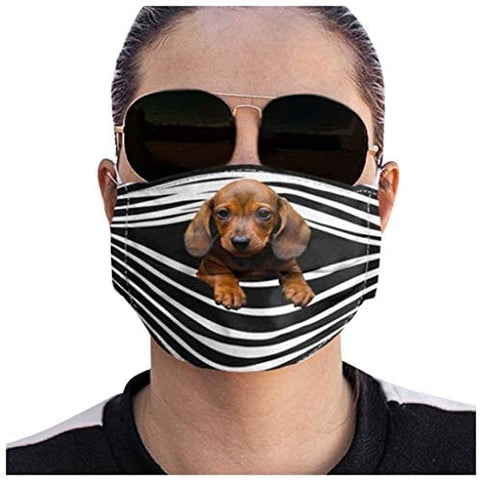 XUETON Facemask Funny Dogs Prints Breathable Washable Facemasks Filter for Women Men