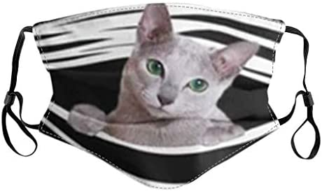 Adult Unisex Women Men Cute Cat Printed Breathable Washable Reusable Face Filter Can Be Placed(A)