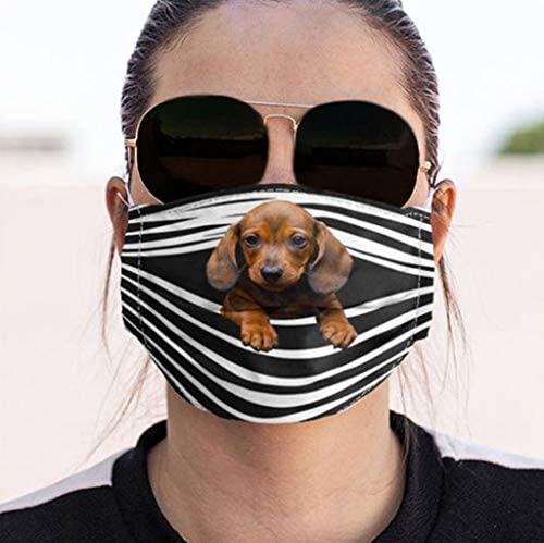 Facemask Funny Dogs Prints Breathable Washable Facemasks Filter for Women Men