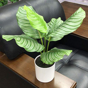 Tropical Faux Potted Plant