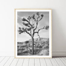 "Load image into Gallery viewer, ""Joshua""  Tree Wall Art"