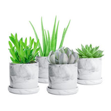 Load image into Gallery viewer, Marble Design Set of 4 Succulent Planters