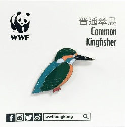 Mai Po Bird Pin - Common Kingfisher | 米埔雀鳥 - 普通翠鳥