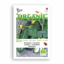 Organic Seeds Packet - Cucumber | 有機袋裝種子 - 青瓜