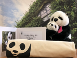 Bring Me Home - Giant Panda Parent & kid |  帶我回家 - 親子熊貓