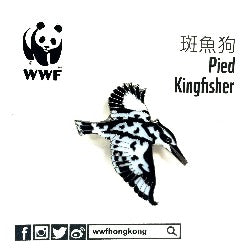 Mai Po Bird Pin - Pied Kingfisher | 米埔雀鳥 - 斑魚狗