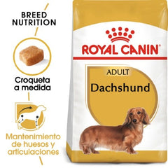 ROYAL CANIN DACHSHUND - ADULT