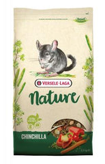 Nature Chinchilla - MundoAnimal.pt