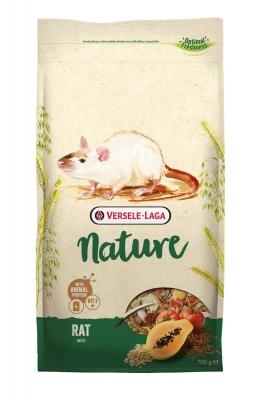 Nature Rat - MundoAnimal.pt