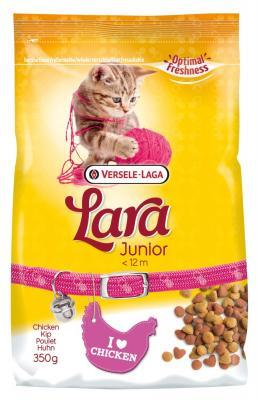 LARA JUNIOR- FRANGO - Mundo Animal