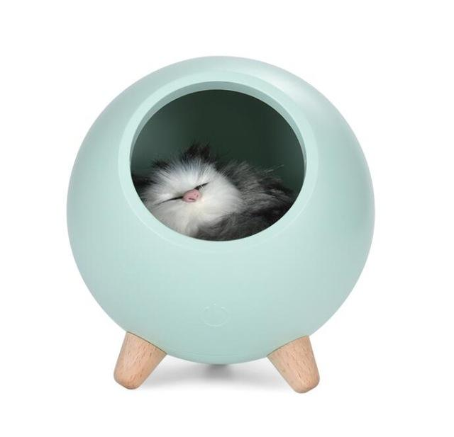 Accent LED Pet House Light - Shop pets food, toys & clothing | Dog & Cat Supplies and Accessories!