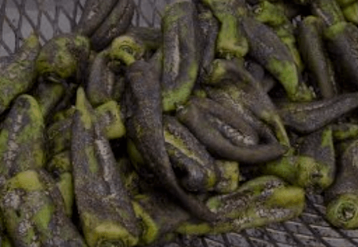 How to Process and Store Green Chile
