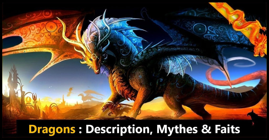 Dragons : Description, Mythes & Faits