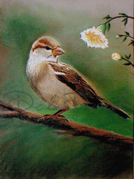 The Bird Painting