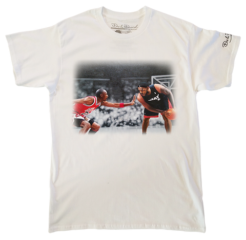 Air Jordan vs King James Mens Perfect T-Shirt