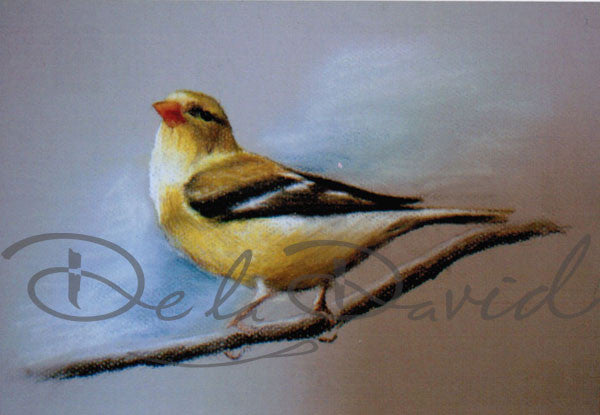 Yellow Bird Painting
