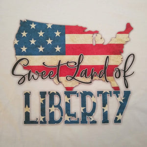 USA America Sweet Land of Liberty Graphic Printed T-Shirt