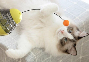 Interactive Cat Toy - With Food Dispensing Ball