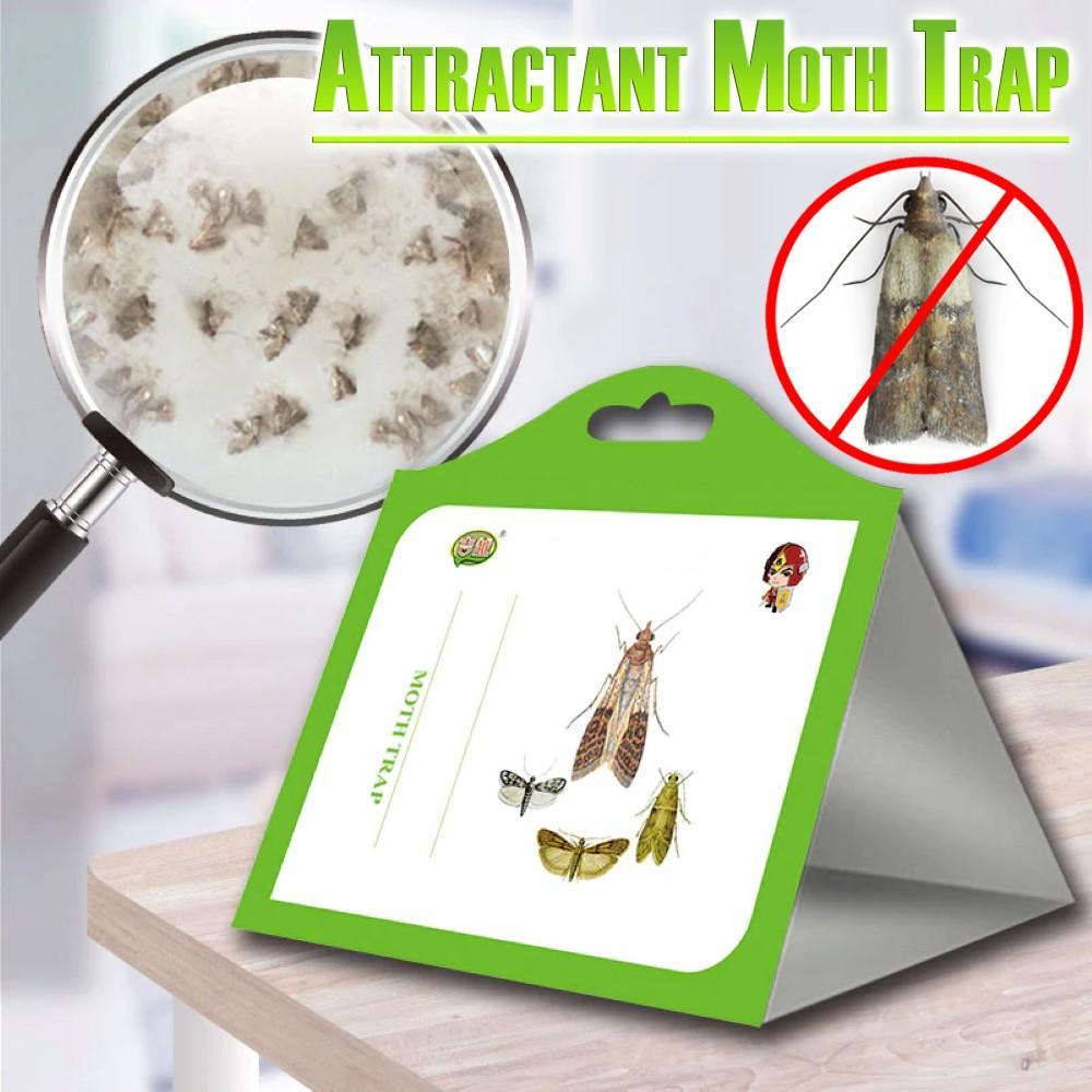 Attractant Moth Trap (5pcs/Pack)