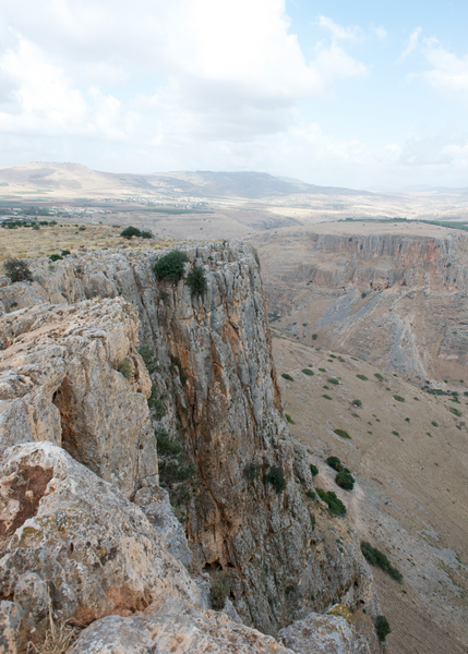 Mt Arbel, She Pens Truth, Along with Jesus: An Easter Devotional, Maggie Greenway