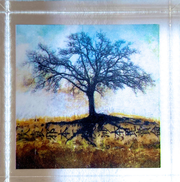 Tree of Life Print Acrylic Block