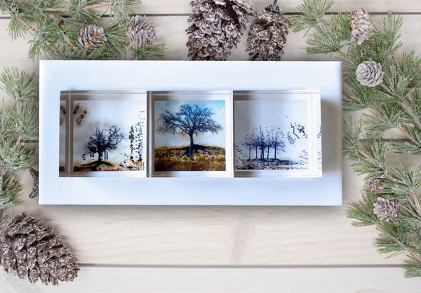 3 Natural Tree Prints in Acrylic presented in a White Corian Tray