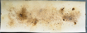 Coffee Abstract Art Original Print 02 - 12 x 36 inches