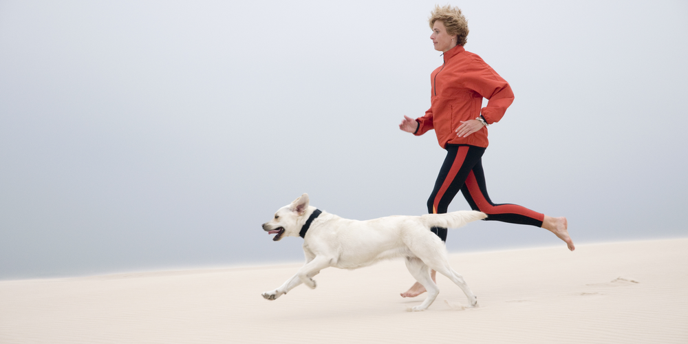 How A Dog Can Help You Get More Exercise?