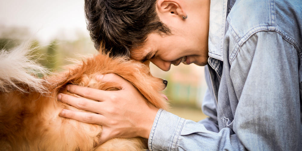 How Dogs Can Help Your Mental Health