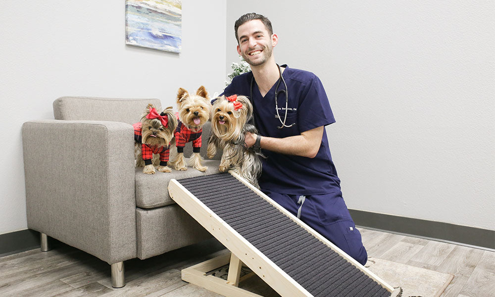 Dr. Ross with the Dog Ramp