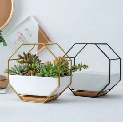 Minimalist Wall & Desk Planter