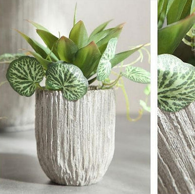 Decorative Clay Pots for Plants 2020