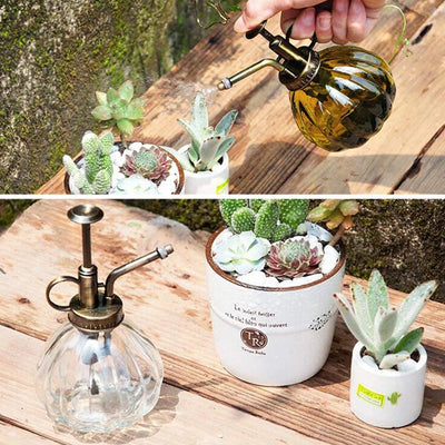 Glass Pumpkin Spray Bottle - ThepotplantCo