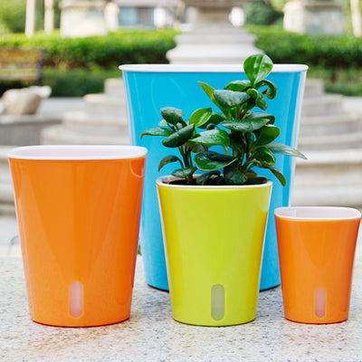 Vibrant Colorful Self Watering Pots