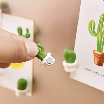 Cute Succulent Plant Fridge Magnets - ThepotplantCo